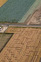 Corn field maze. Pueblo County, Colorado. Sept 2011