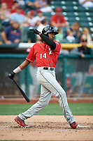 Domonic Brown (14) of the Albuquerque Isotopes bats against the Salt Lake Bees in Pacific Coast League action at Smith's Ballpark on June 10, 2017 in Salt Lake City, Utah. The Isotopes defeated the Bees 4-2. (Stephen Smith/Four Seam Images)