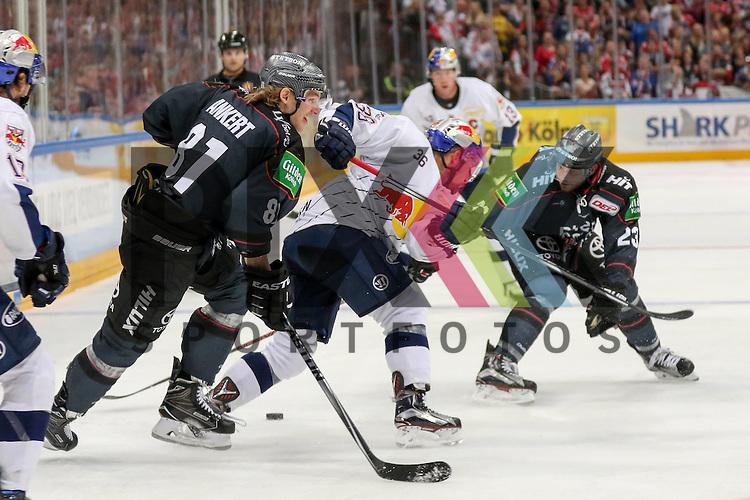 Muenchens Yannic Seidenberg (Nr.36) im Zweikampf mit Koelns Max Reinhardt (Nr.23) und Koelns Torsten Ankert (Nr.81)  beim Spiel der DEL, Koelner Haie (dunkel) - EHC Red Bull Muenchen (weiss).<br /> <br /> Foto &copy; PIX-Sportfotos *** Foto ist honorarpflichtig! *** Auf Anfrage in hoeherer Qualitaet/Aufloesung. Belegexemplar erbeten. Veroeffentlichung ausschliesslich fuer journalistisch-publizistische Zwecke. For editorial use only.