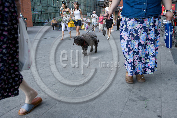 POZNAN - POLAND - 3 JUNE 2008 -- A lady walking with her dog.  Photo: Erik Luntang/EUP-IMAGES