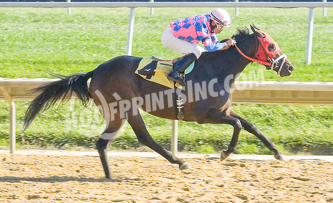 Tizashadow winning at Delaware Park on 10/22/12