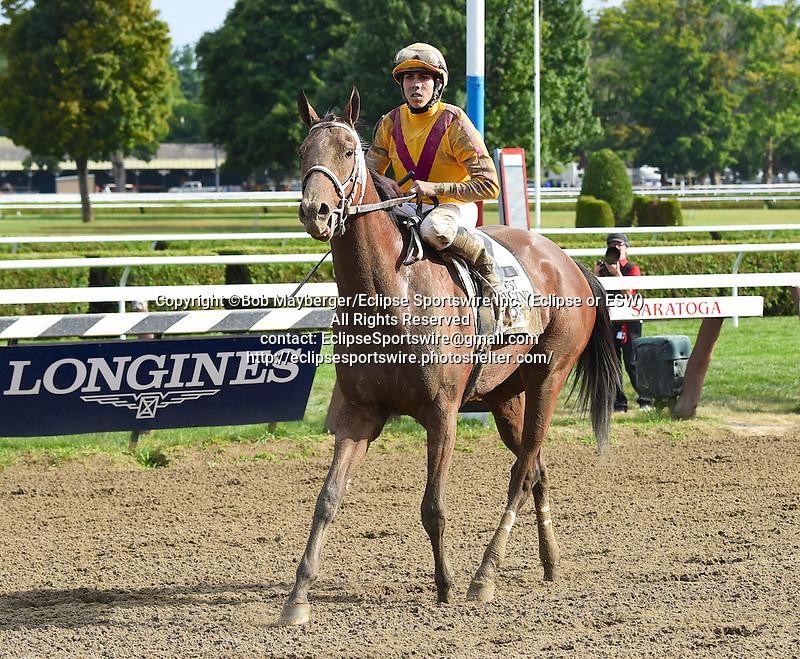 Cavorting (no. 2), ridden by Irad Ortiz Jr. and trained by Kiaran McLaughlin, wins the 90th running of the grade 1 Test Stakes for three year olds on August 8, 2015 at Saratoga Race Course in Saratoga Springs, New York. (Bob Mayberger/Eclipse Sportswire)