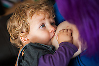 A young woman breastfeeds her toddler whilst sitting on a sofa in her living room.<br /> <br /> 27/09/12<br /> Berkshire, England, UK