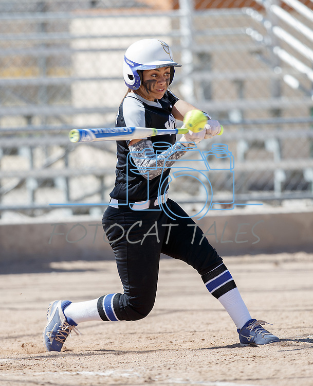 Western Nevada's Gabrielle Canibeyaz hits against Colorado North Western at Edmonds Sports Complex Carson City, Nev., on Friday, March 18, 2016.<br /> Photo by Jeff Mulvihill, Jr.