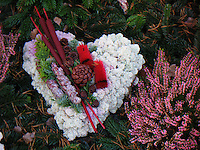 Rentierflechte, Flechte wird genutzt in der Grabpflege als Blumengesteck, Friedhofsgesteck, Friedhofskranz, Sternförmige Rentierflechte, Rentier-Flechte, Alpen-Rentierflechte, Cladonia stellaris, cup lichen, reindeer lichen, silver moss