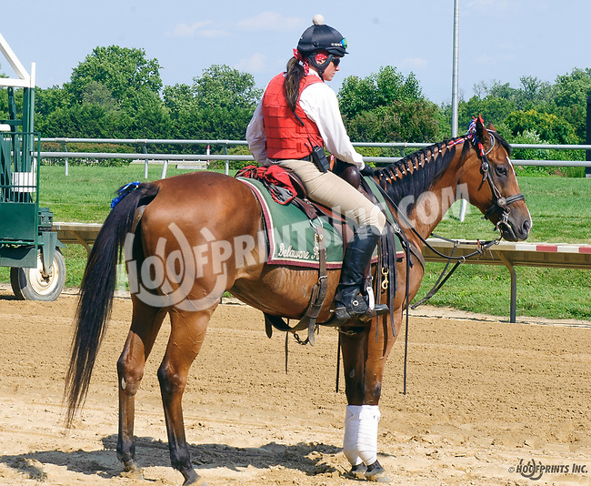 outrider at Delaware Park on 7/3/17