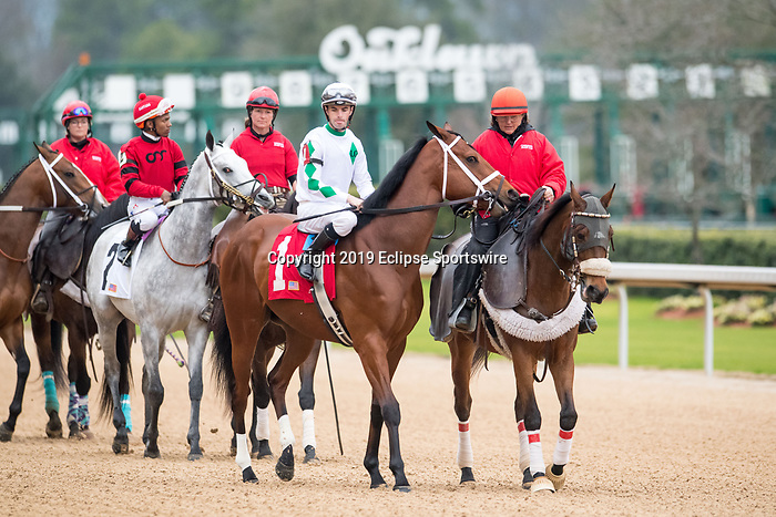 February 17, 2020:Wells Bayou (1) with jockey Florent Geroux aboard during the Southwest Stakes at Oaklawn Racing Casino Resort in Hot Springs, Arkansas on February 17, 2020. Ted McClenning/Eclipse Sportswire/CSM