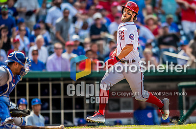 29 June 2017: Washington Nationals outfielder Bryce Harper hustles home to score against the Chicago Cubs at Nationals Park in Washington, DC. The Cubs rallied against the Nationals to win 5-4 and split their 4-game series. Mandatory Credit: Ed Wolfstein Photo *** RAW (NEF) Image File Available ***