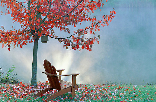 Fall-- landscaping lights placed beside lake create a glow up into the mist that appears magical. Fall maple and wee birdhouse and a chair to enjoy them all.
