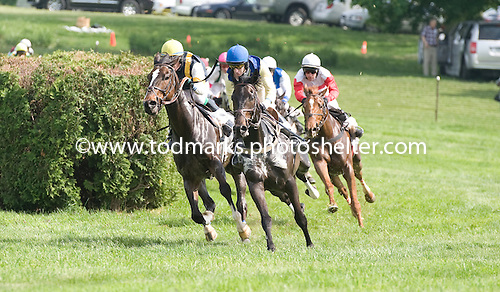 Virginia Minstrel, blue cap, cuts the corner turning for home in a training flat race at Winterthur.