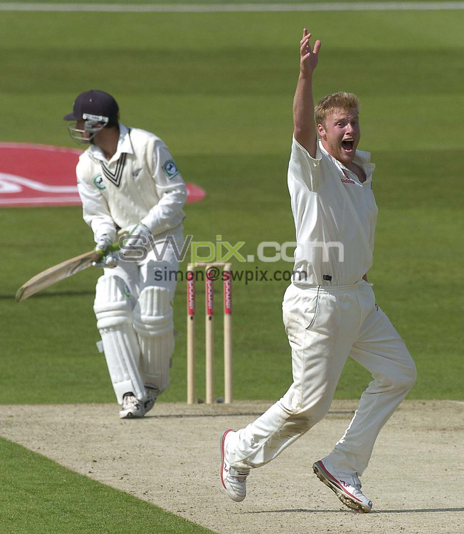 Pix: Ben Duffy/SWpix.com -  International Cricket..NPower 2nd test England v New Zealand.... 04/06/2004. ..COPYRIGHT PICTURE>>SIMON WILKINSON>>01943 608782>>..England's Andrew Flintoff appeals for the wicket of Nathan Astle