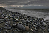 Rocky beach along the Gulf of Alaska, Pacific ocean coast, Glacier Bay National Park, Southeast, Alaska