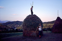ROMANIA / Maramures / Valeni / July 2003..Maria Nemes, 20, stands on top of one of the 30 or more haystacks she makes each summer with her mother, Maria, 51. In an age-old practice, hay is cut by scythe and then gathered into stacks each of which can feed a family's horses and cows for about 10 days. Maramures is one of the last places in Europe where agriculture remains almost completely unmechanized...© Davin Ellicson / Anzenberger