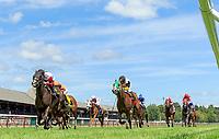 07-26-17  Saratoga Race Course Scenes July 26, 2017