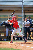 Philadelphia Phillies Ben Pelletier (26) at bat during an Instructional League game against the Detroit Tigers on September 19, 2019 at Tigertown in Lakeland, Florida.  (Mike Janes/Four Seam Images)