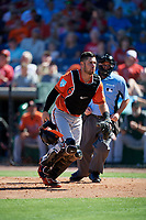 Baltimore Orioles catcher Austin Wynns (61) and home plate umpire Tom Hallion during a Grapefruit League Spring Training game against the Philadelphia Phillies on February 28, 2019 at Spectrum Field in Clearwater, Florida.  Orioles tied the Phillies 5-5.  (Mike Janes/Four Seam Images)