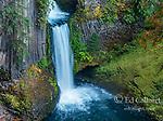 Toketee Falls, North Umpqua River, Umpqua National Forest, Douglas County, Oregon
