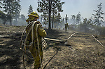 August 22, 2001 Coulterville, California  -- Creek Fire –  Fire crew working mop-up on Cuneo Road. The Creek Fire burned 11,500 acres between Highway 49 and Priest-Coulterville Road a few miles north of Coulterville, California.
