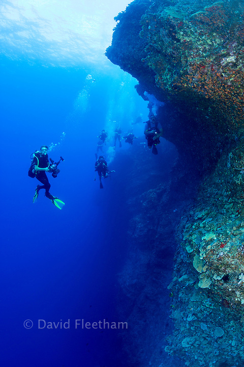 A group of divers (MR) on one of the corners of the Backwall at Molokini Marine Preserve, off Maui, Hawaii.