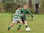 Albion Green Eoin McMahon Termonfeckin Green Donal Quinn. Photo:Colin Bell/pressphotos.ie