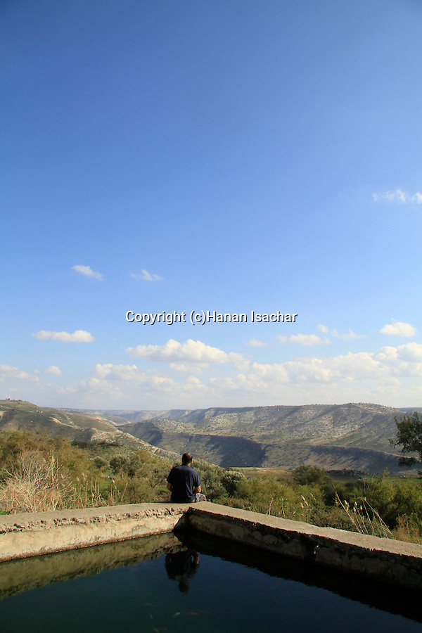 Ein Aya in the Golan Heights