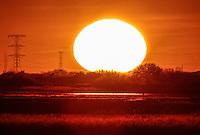 Sol<br /> <br /> CreditoFoto:LuisGutierrez<br /> ContactoVentas:photoluis1@gmail.com