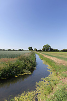 30.5.2020 Watercourse in the Lincolnshire Fens <br /> ©Tim Scrivener Photographer 07850 303986<br />      ....Covering Agriculture In The UK.