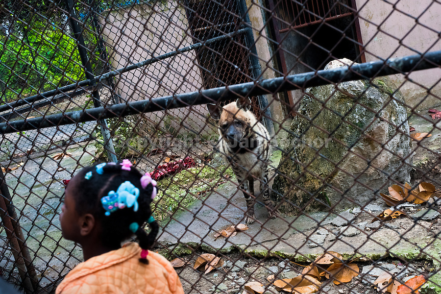 A Cuban girl walks along the concrete cage with a hyena at the Havana Zoo, Havana, Cuba, 12 February 2011. The largest and the oldest zoo in Cuba (founded in 1939) is located in a centric neighborhood of the capital. Since the 1990s Cuba struggles with chronic economic crisis and therefore the strong marks of rundown and lack of sources are evident within the whole zoological garden. A lot of cages are empty and out of use for long time, the remaining animals are captured in poorly maintained pits. Concrete enclosures have no vegetation, all facilities are unkept. The food supply is often inadequate and visitors throw junkfood to the animals because there are no zookeepers around.