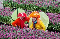 Nederland Amsterdam, 20 januari 2018 - Nationale Tulpendag. De opening van het tulpenseizoen. Op de Dam in Amsterdam wordt de officiële aftrap van het tulpenseizoen gegeven. De opening van het tulpenseizoen wordt georganiseerd door Nederlandse tulpenkwekers. In een speciaal aangelegde pluktuin op de Dam kan iedereen gratis tulpen plukken. Foto Berlinda van Dam / Hollandse Hoogte