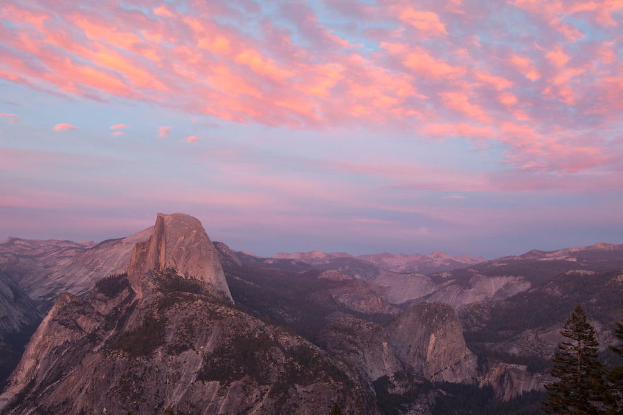 Half Dome under pink clouds, Yosemite National Park, California, USA