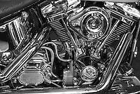Harley Davidson Motorcycle motor/engine