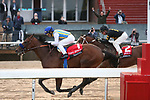 March 14, 2020: Nadal (1) with jockey Joel Rosario aboard fighting off Excession (2) with jockey Tyler Baze aboard after crossing the finish line in the Rebel Stakes at Oaklawn Racing Casino Resort in Hot Springs, Arkansas on March 14, 2020. Justin Manning/Eclipse Sportswire/CSM