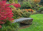 Kubota Gardens, Seattle, WA: Vibrant red autumn leaves of burning bush (Euonymus alatus) accentuates a garden bed near the ponds in the Tom Kubota Stroll Garden