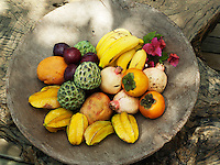 Exotic fruit is served from a wooden bowl on a texture tree trunk used as a coffee table