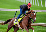LOUISVILLE, KENTUCKY - APRIL 28: Code of Honor, trained by Claude McGaughey III, exercises in preparation for the Kentucky Derby at Churchill Downs in Louisville, Kentucky on April 28, 2019. John Voorhees/Eclipse Sportswire/CSM
