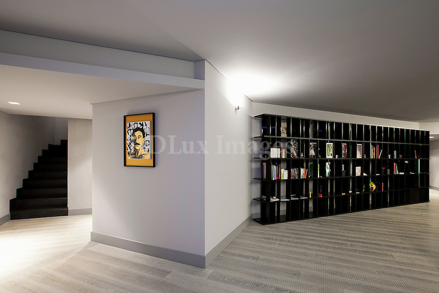 wall bookcase in the living room