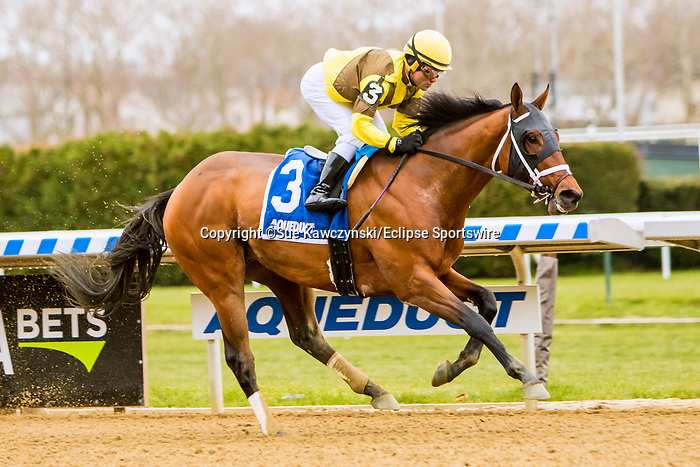 NOVEMBER 24, 2018 : Plainsman, ridden by Joel Rosario, wins the Discovery Stakes at Aqueduct Racetrack on November 24, 2018 in South Ozone, NY.  Sue Kawczynski/ESW/CSM