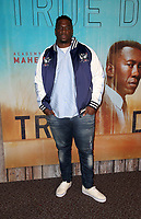 LOS ANGELES, CA - JANUARY 10: Donovan Carter, at the Los Angeles Premiere of HBO's True Detective Season 3 at the Directors Guild Of America in Los Angeles, California on January 10, 2019. Credit: Faye Sadou/MediaPunch