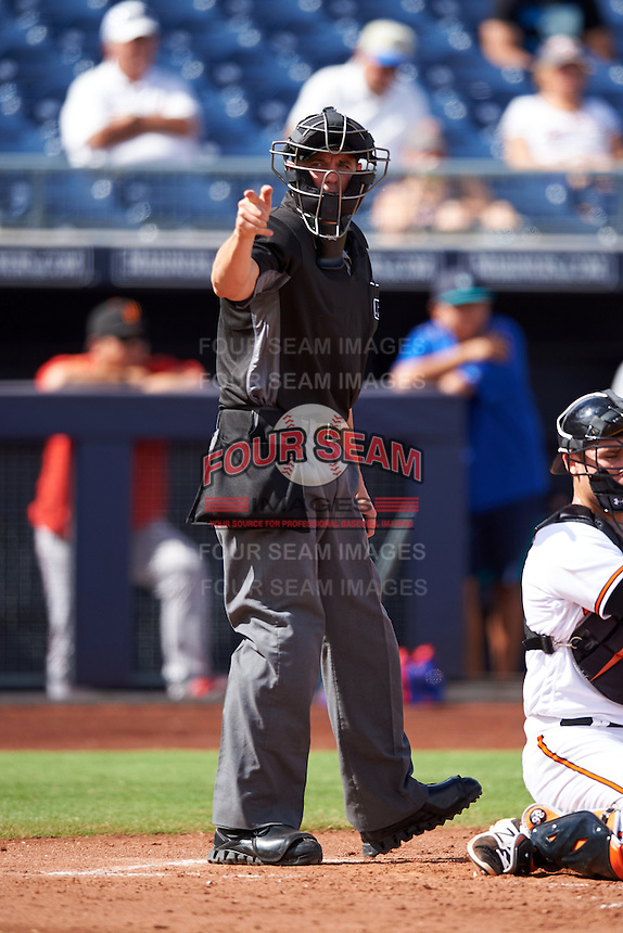 Umpire Shane Livensparger during an Arizona Fall League game between the Surprise Saguaros and Peoria Javelinas on October 12, 2016 at Peoria Stadium in Peoria, Arizona.  The game ended in a 7-7 tie after eleven innings.  (Mike Janes/Four Seam Images)