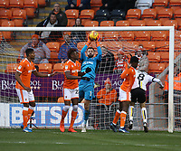Blackpool's Armand Gnanduillet watches as goalkeeper Mark Howard collects the ball<br /> <br /> Photographer Stephen White/CameraSport<br /> <br /> The EFL Sky Bet League One - Blackpool v Burton Albion - Saturday 24th November 2018 - Bloomfield Road - Blackpool<br /> <br /> World Copyright © 2018 CameraSport. All rights reserved. 43 Linden Ave. Countesthorpe. Leicester. England. LE8 5PG - Tel: +44 (0) 116 277 4147 - admin@camerasport.com - www.camerasport.com