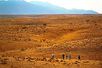 Orienteering classroom outdoors - aerial view of teenage male students walking on grassy plain. High School Students. Arizona.