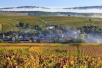 France, Cher (18), région du Berry, région du Sancerrois, Bué, et le vignoble en automne, brumes matinales // France, Cher, Sancerrois, Bue and the vineyard in autumn, morning mists