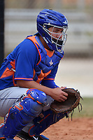New York Mets catcher Jose Garcia (16) during practice before a minor league spring training game against the St. Louis Cardinals on April 1, 2015 at the Roger Dean Complex in Jupiter, Florida.  (Mike Janes/Four Seam Images)