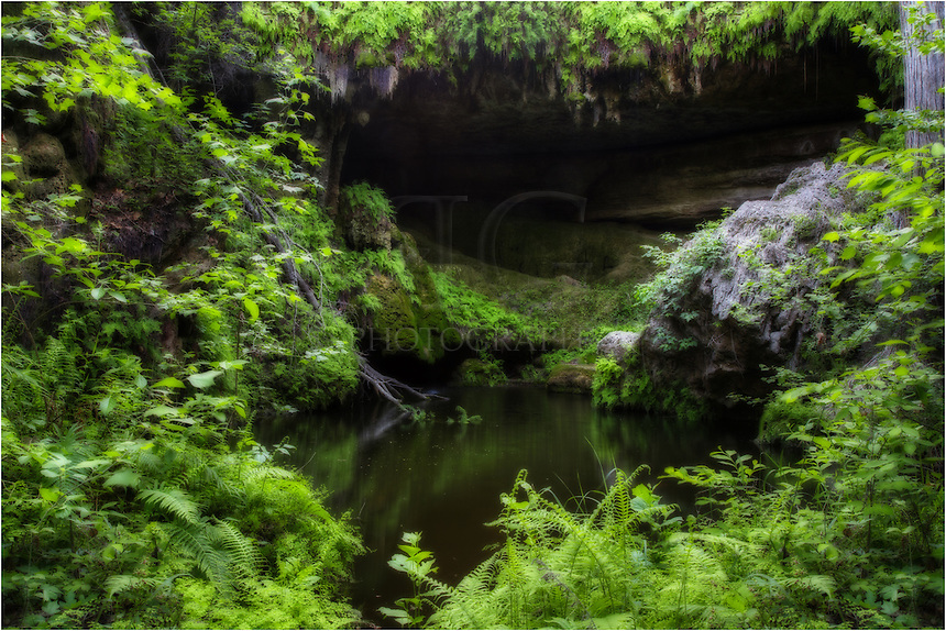 At the edge of an emerald pool at Westcave Preserve, you can enjoy the cool air of a hidden grotto. This gem located out Hamilton Pool in the Texas Hill Country is a great place to visit anytime of year, but the springtime is wonderful with the onset of new growth. Take an afternoon and enjoy this wonderful hidden respite in the heart of Texas.