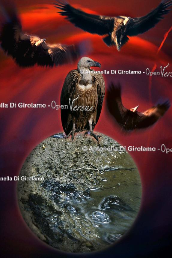 Fine del mondo.End of the World.......