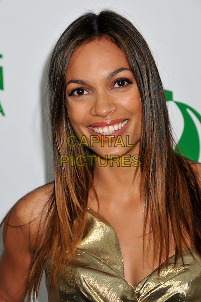 ROSARIO DAWSON.Global Green USA 13th Annual Millennium Awards held at the Fairmont Miramar Hotel, Santa Monica, CA, USA..May 30th, 2009.headshot portrait gold.CAP/ADM/BP.©Byron Purvis/AdMedia/Capital Pictures.