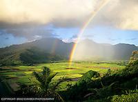 KAUAI-LANDSCAPES