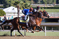 Blueskiesandrainbows (inside) and Game On Dude working for trainer Bob Baffert at Santa Anita Park in Arcadia California