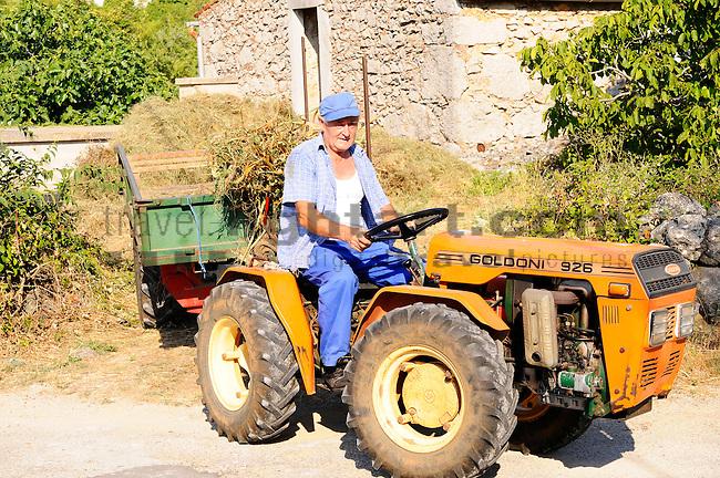 Bauer fährt mit Traktor im Ort Vrh. Farmer drives a tractor in the village of Vrh. Krk Island, Dalmatia, Croatia. Insel Krk, Dalmatien, Kroatien. Krk is a Croatian island in the northern Adriatic Sea, located near Rijeka in the Bay of Kvarner and part of the Primorje-Gorski Kotar county. Krk ist mit 405,22 qkm nach Cres die zweitgroesste Insel in der Adria. Sie gehoert zu Kroatien und liegt in der Kvarner-Bucht suedoestlich von Rijeka.