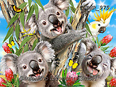 Howard, REALISTIC ANIMALS, REALISTISCHE TIERE, ANIMALES REALISTICOS,Koala,Koalas, paintings+++++,GBHR975,#a#, EVERYDAY,puzzle,puzzles